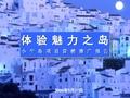 伟业_大连小平岛项目营销推广报告_161P_海滨居住_产品定位_推广方案_销售策略