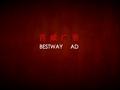 保利_湖南长沙<font color=red>世纪</font>荣城项目广告推广策略思考_83P_百威_VI_文案示意_logo