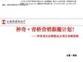 合富辉煌_贵州贵阳神奇地产项目品牌塑造及项目营销思路_80P_旅游地产_定价报告