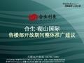 <font color=red>合生</font>湖山国际售楼部开放期间整体推广建议_38P_蓄客方案_活动传播_营销策划