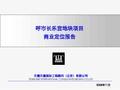 呼和浩特长乐宫地块项目商业定位报告_177P_业态判定_功能定位_特色景观