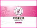 四川成都置信时尚青年城项目商业介绍_57P_商业规划_总部基地