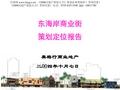 万科_广东深圳东海岸商业街策划定位报告_62p_<font color=red>美格</font>行_市场分析_下项目分析_招商执行